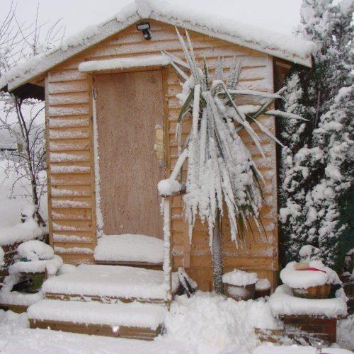 "Martin Wild 8"" Snow"